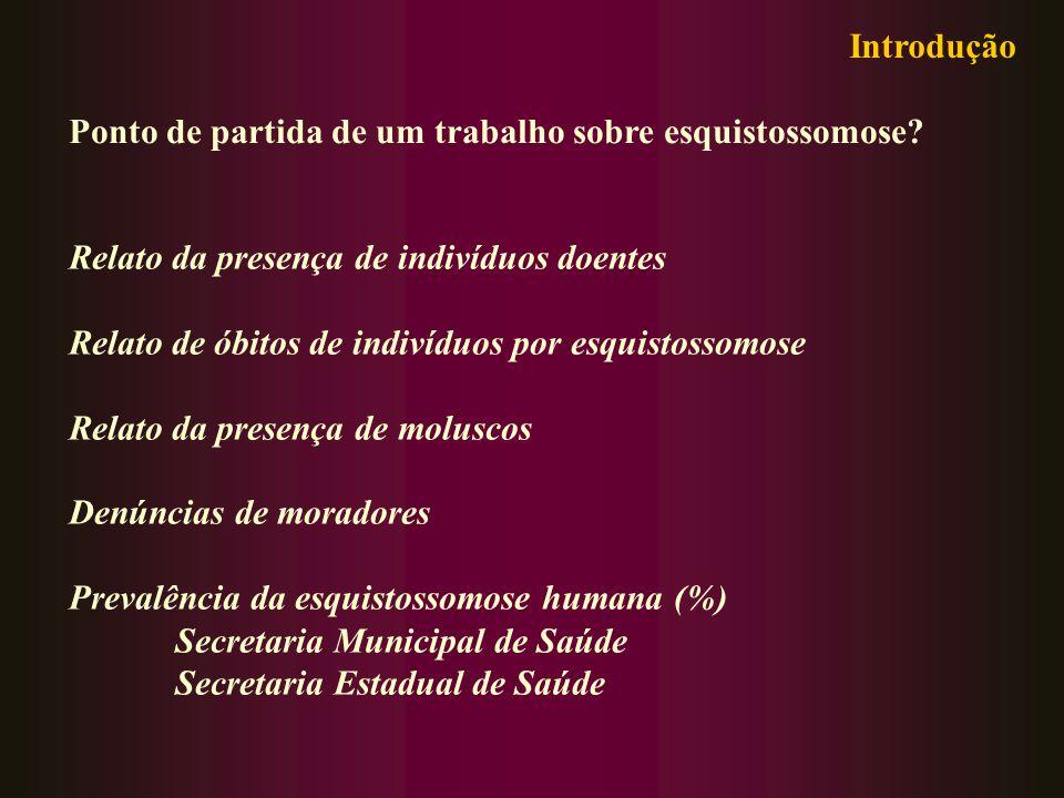 Introdução Ponto de partida de um trabalho sobre esquistossomose Relato da presença de indivíduos doentes.