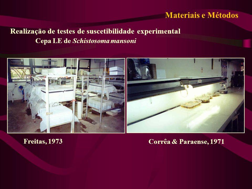 Materiais e Métodos Realização de testes de suscetibilidade experimental. Cepa LE de Schistosoma mansoni.