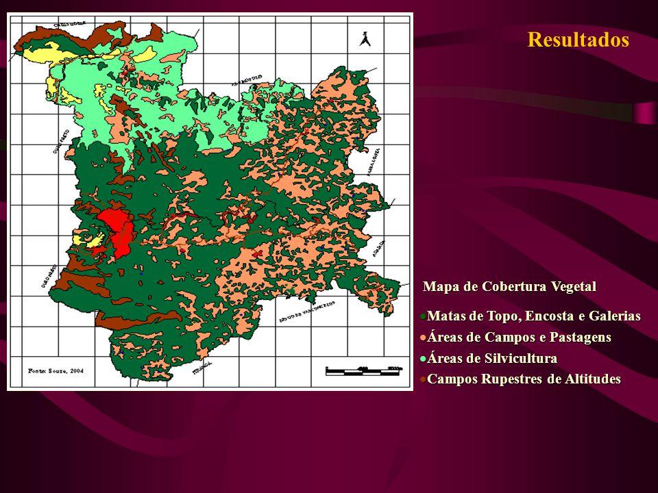 Resultados Mapa de Cobertura Vegetal