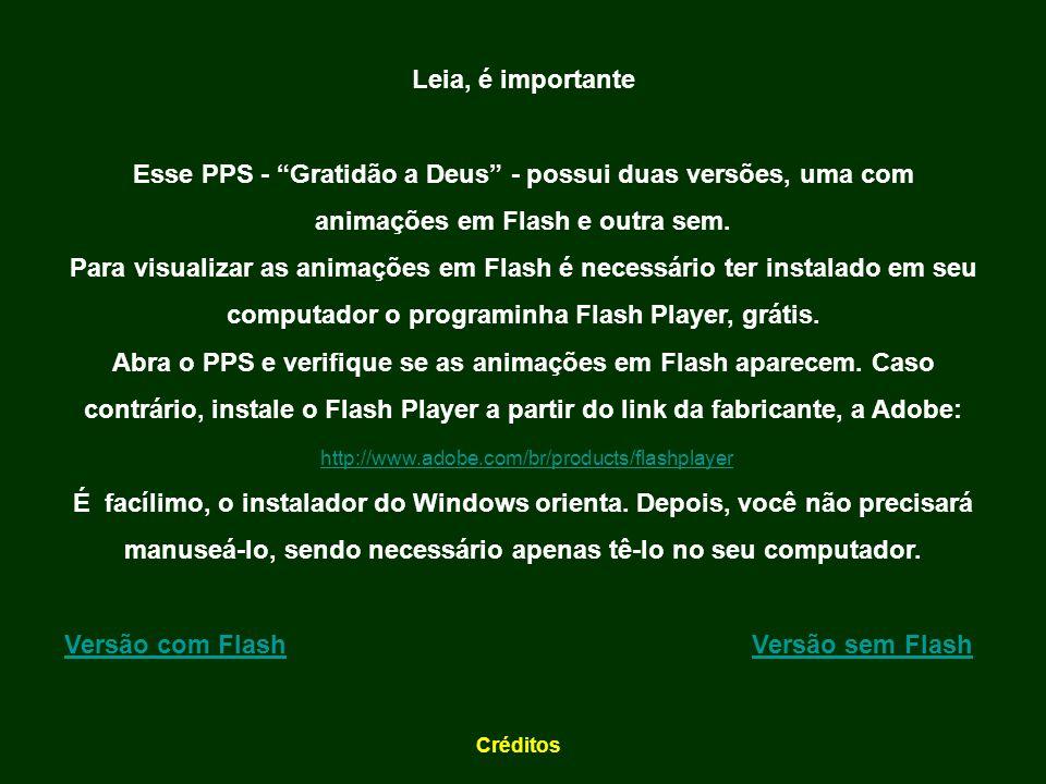 Versão com Flash Versão sem Flash
