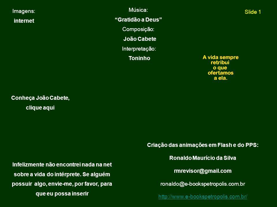 Criação das animações em Flash e do PPS: Ronaldo Maurício da Silva