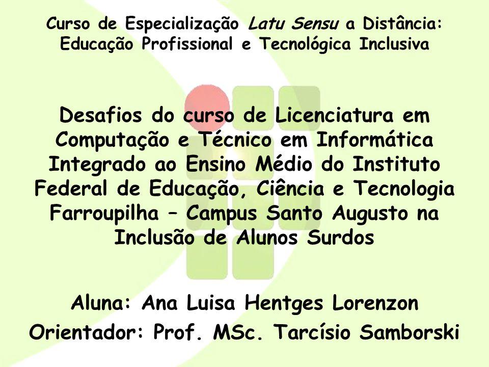Aluna: Ana Luisa Hentges Lorenzon