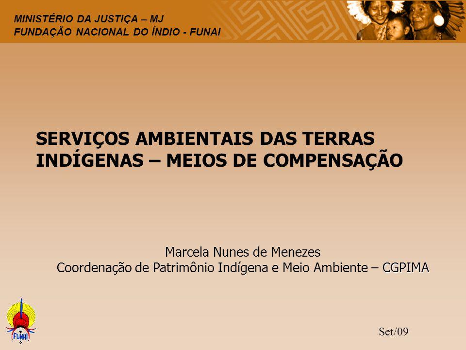 SERVIÇOS AMBIENTAIS DAS TERRAS INDÍGENAS – MEIOS DE COMPENSAÇÃO