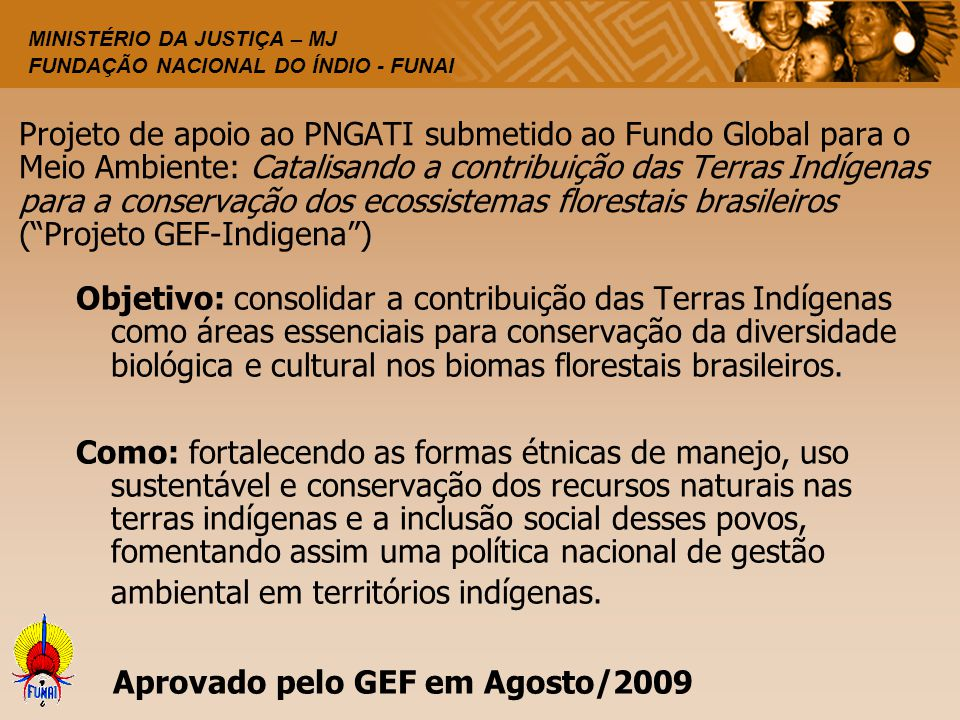 Projeto de apoio ao PNGATI submetido ao Fundo Global para o Meio Ambiente: Catalisando a contribuição das Terras Indígenas para a conservação dos ecossistemas florestais brasileiros ( Projeto GEF-Indigena )
