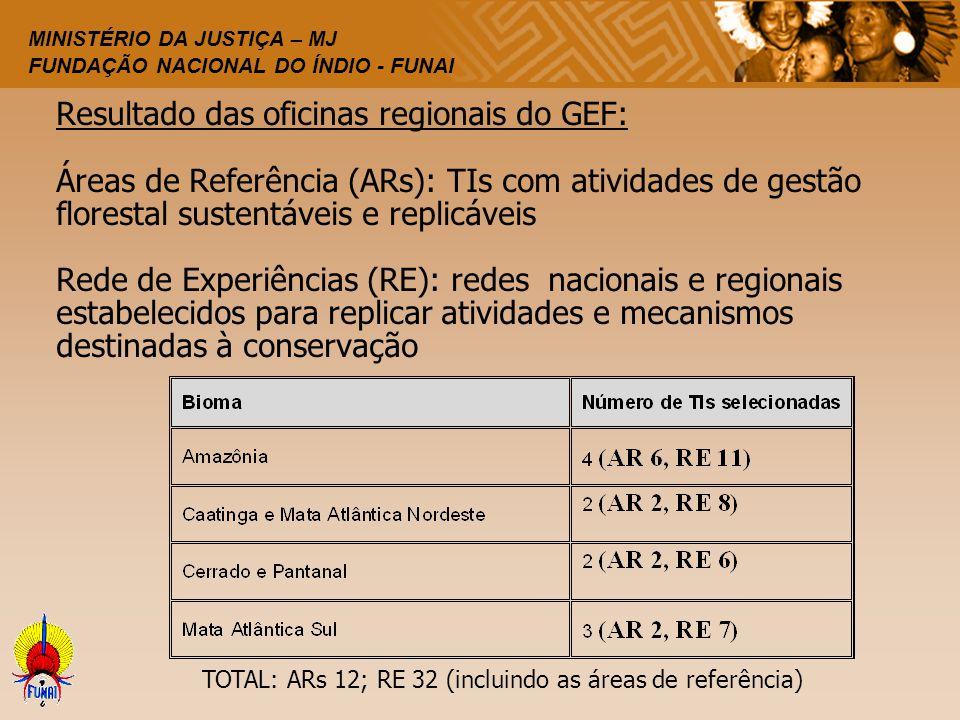 Resultado das oficinas regionais do GEF: Áreas de Referência (ARs): TIs com atividades de gestão florestal sustentáveis e replicáveis Rede de Experiências (RE): redes nacionais e regionais estabelecidos para replicar atividades e mecanismos destinadas à conservação
