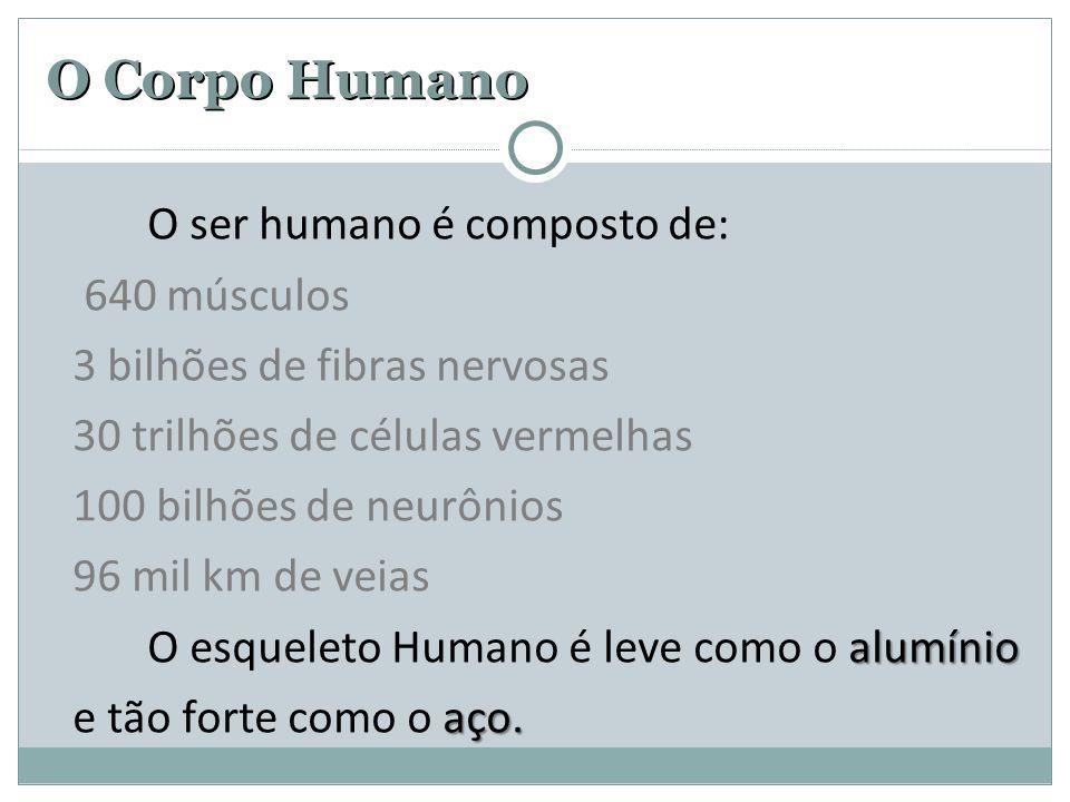O ser humano é composto de: