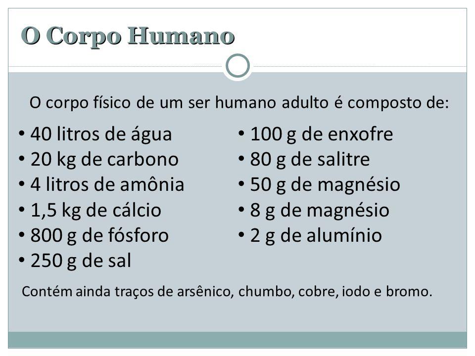 O corpo físico de um ser humano adulto é composto de: