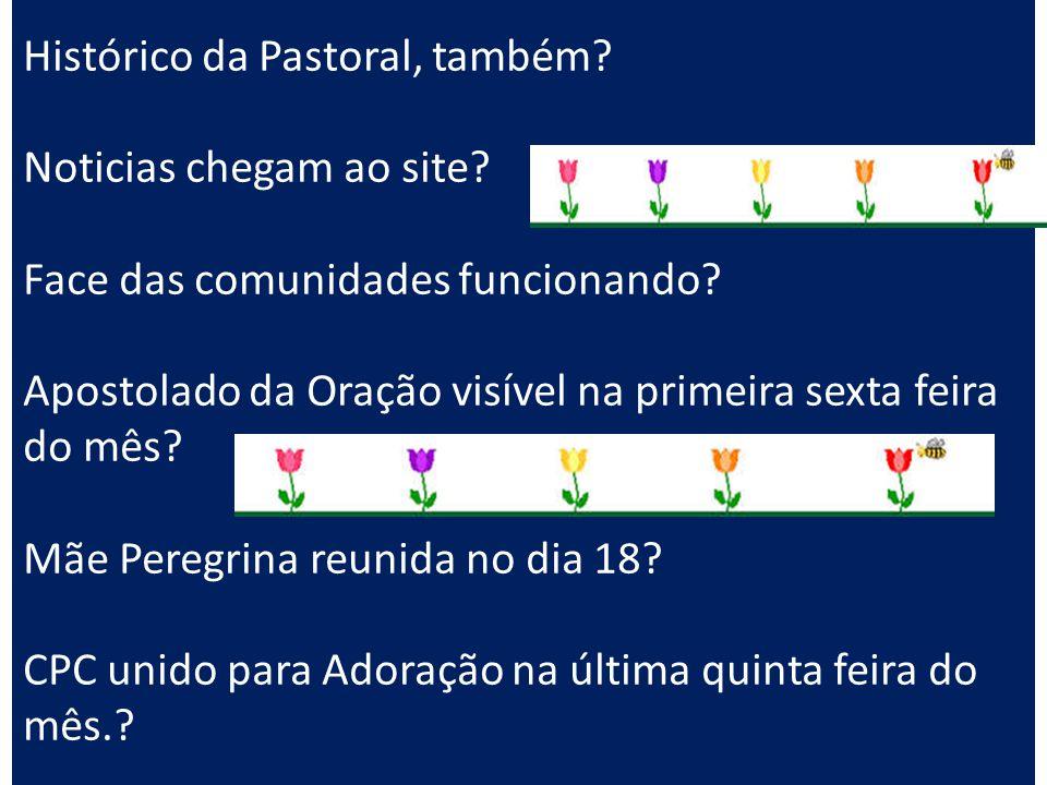 Histórico da Pastoral, também