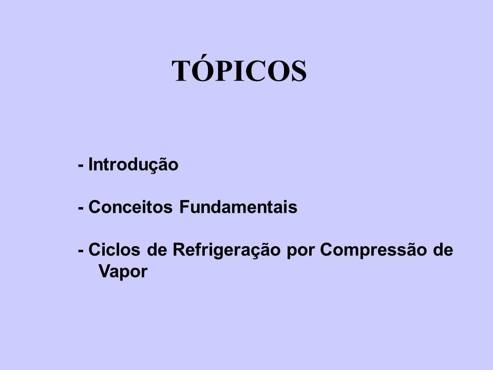 TÓPICOS - Introdução - Conceitos Fundamentais