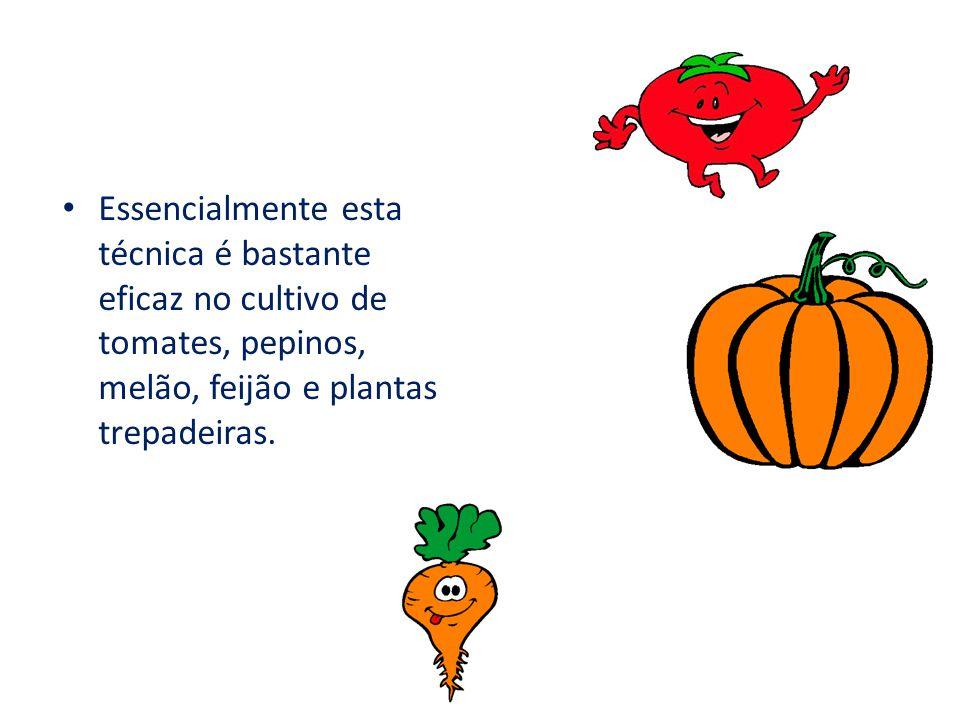 Essencialmente esta técnica é bastante eficaz no cultivo de tomates, pepinos, melão, feijão e plantas trepadeiras.