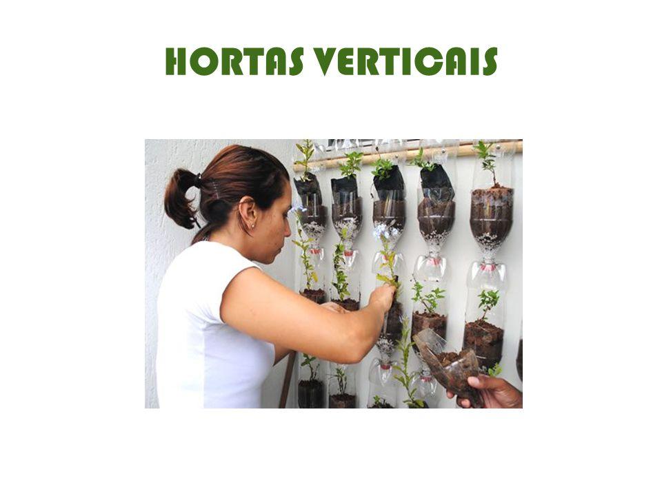 HORTAS VERTICAIS