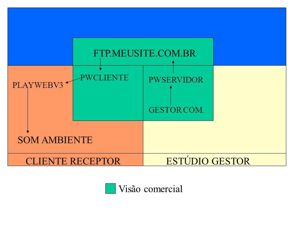 FTP.MEUSITE.COM.BR SOM AMBIENTE CLIENTE RECEPTOR ESTÚDIO GESTOR