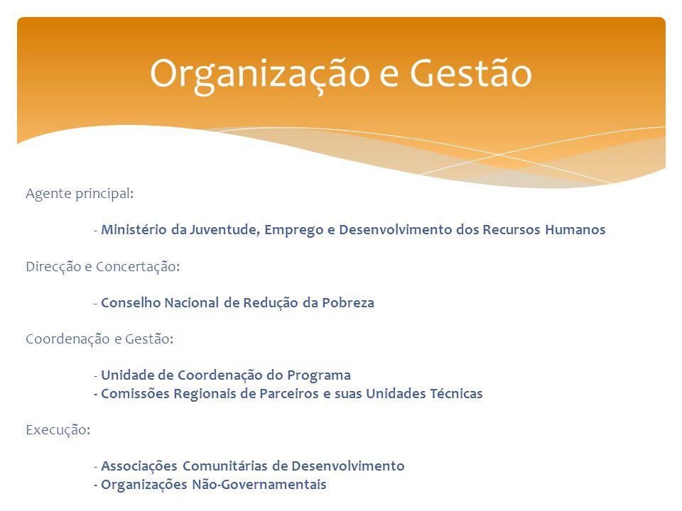 Organização e Gestão