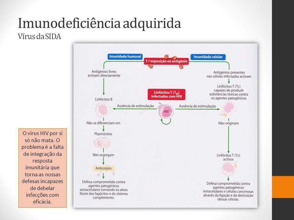 Imunodeficiência adquirida Vírus da SIDA