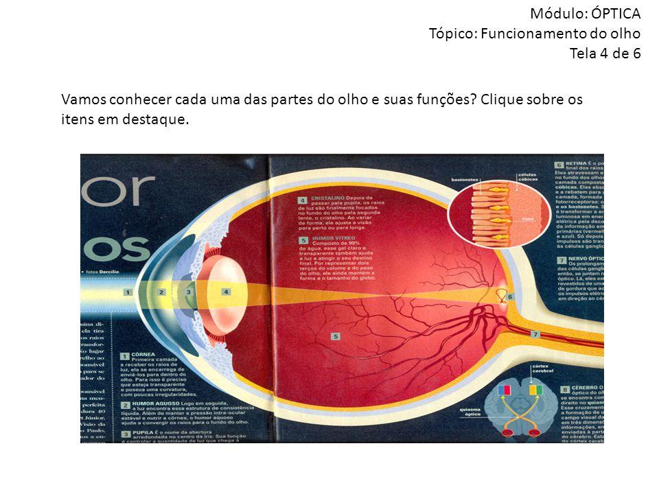 Módulo: ÓPTICA Tópico: Funcionamento do olho Tela 4 de 6