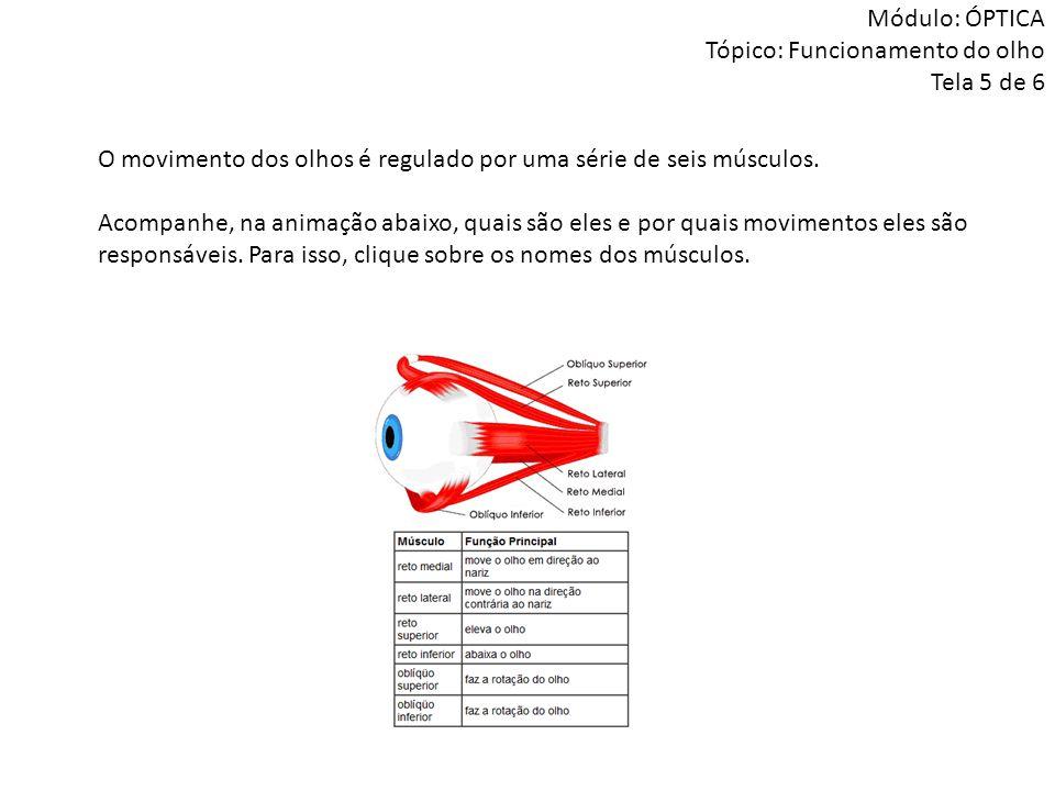 Módulo: ÓPTICA Tópico: Funcionamento do olho Tela 5 de 6