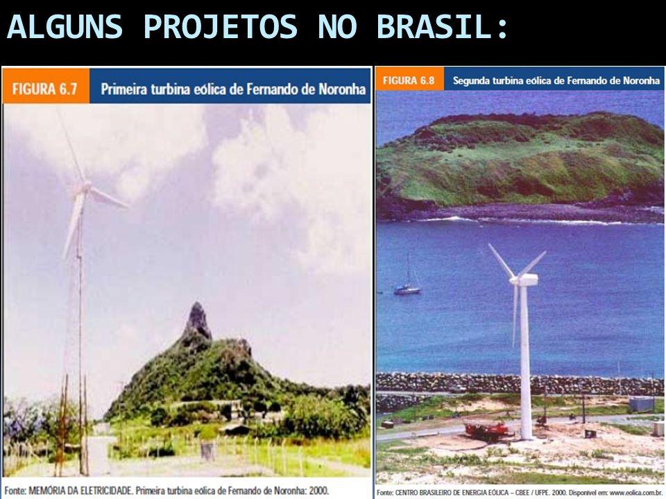 ALGUNS PROJETOS NO BRASIL: