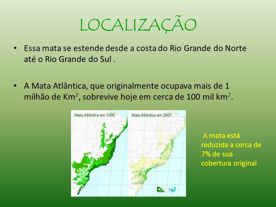 LOCALIZAÇÃO Essa mata se estende desde a costa do Rio Grande do Norte até o Rio Grande do Sul .