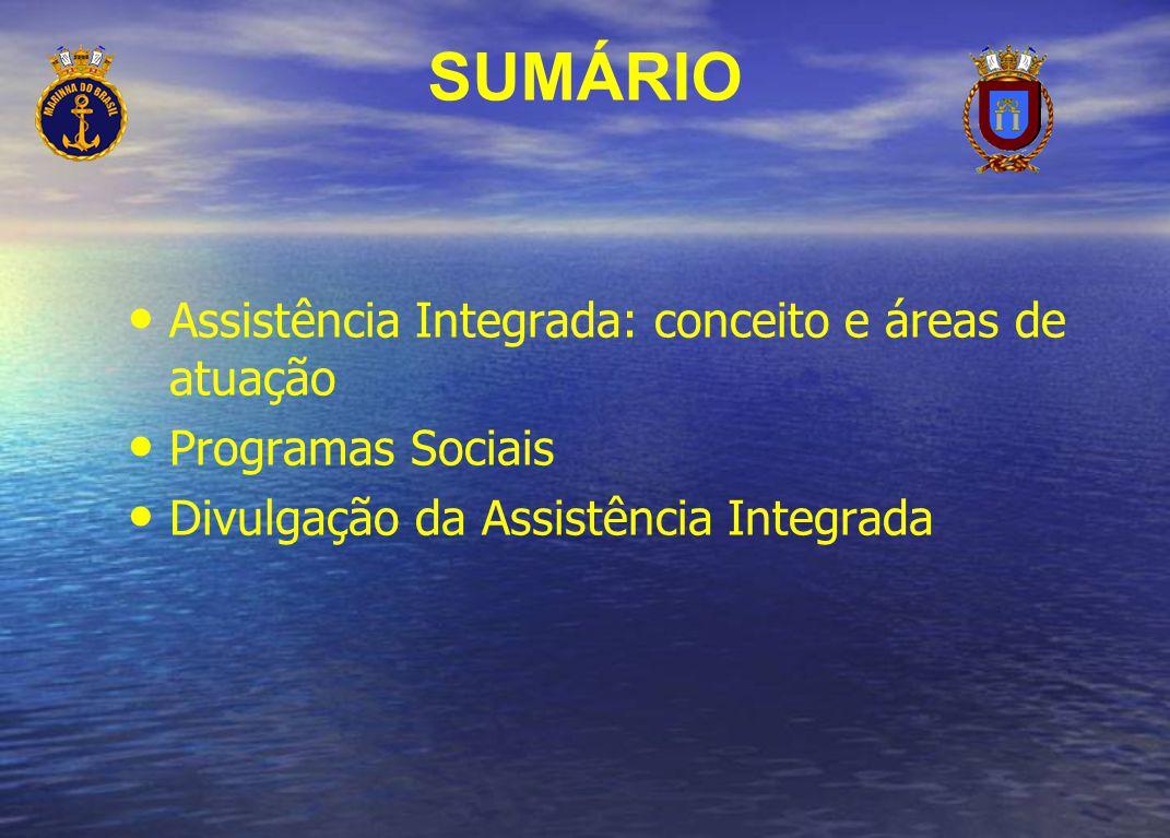 SUMÁRIO Assistência Integrada: conceito e áreas de atuação