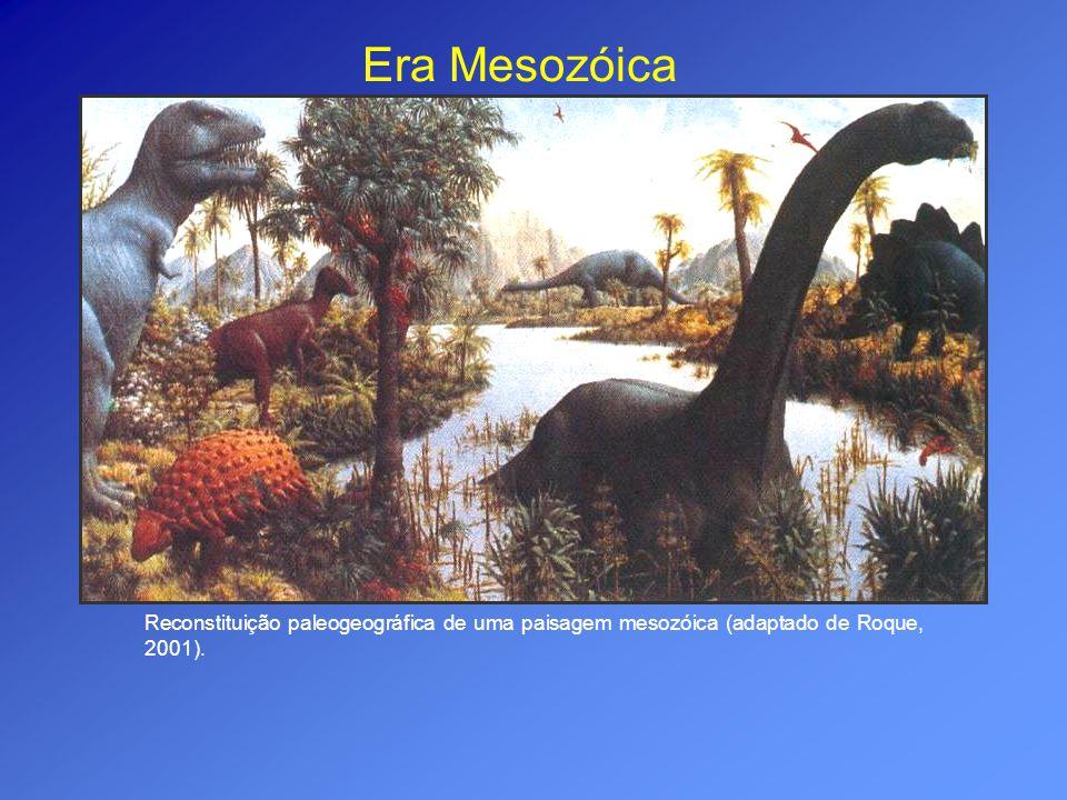 Era Mesozóica Reconstituição paleogeográfica de uma paisagem mesozóica (adaptado de Roque, 2001).