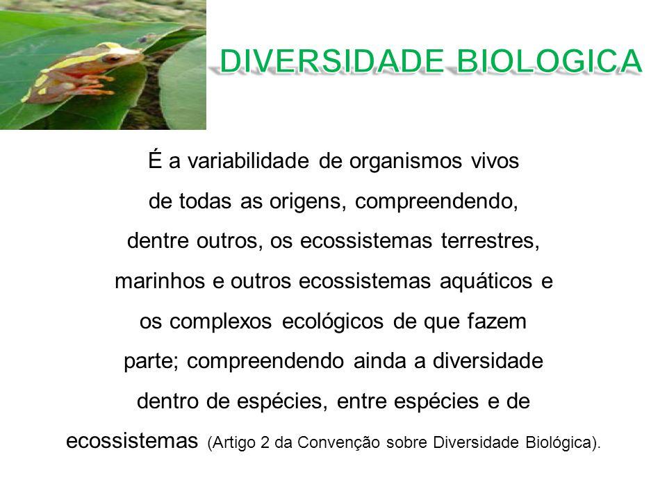 DIVERSIDADE BIOLOGICA
