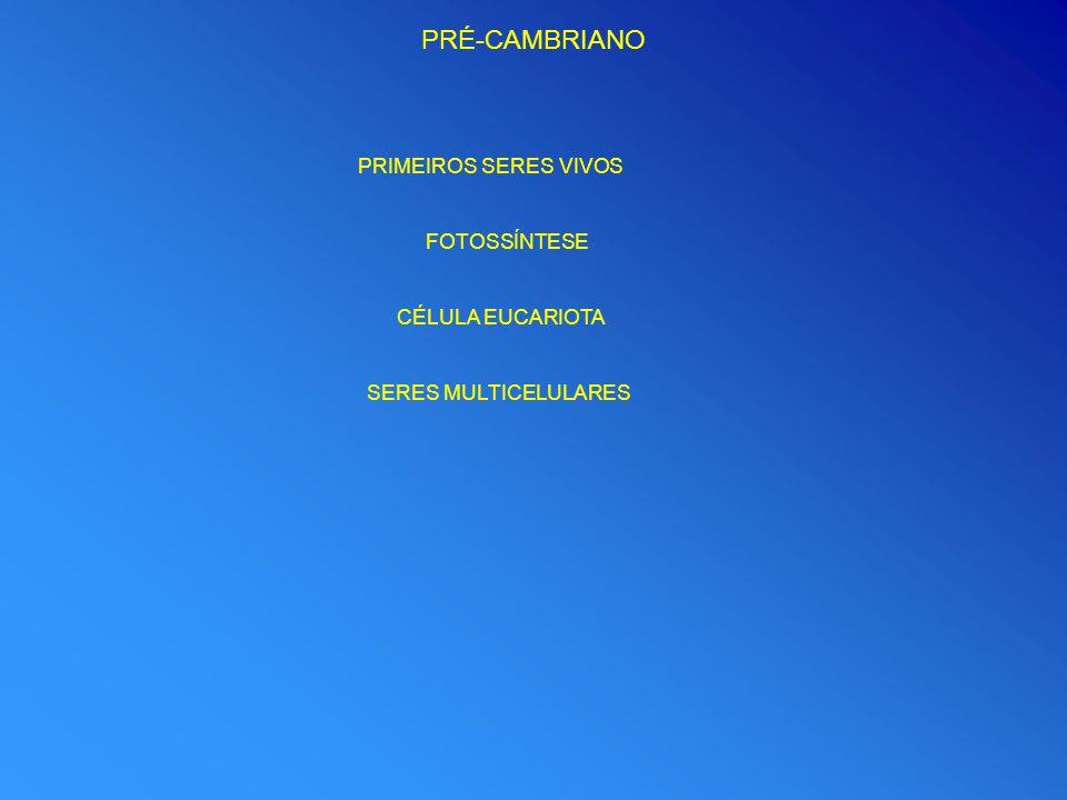 PRÉ-CAMBRIANO PRIMEIROS SERES VIVOS FOTOSSÍNTESE CÉLULA EUCARIOTA