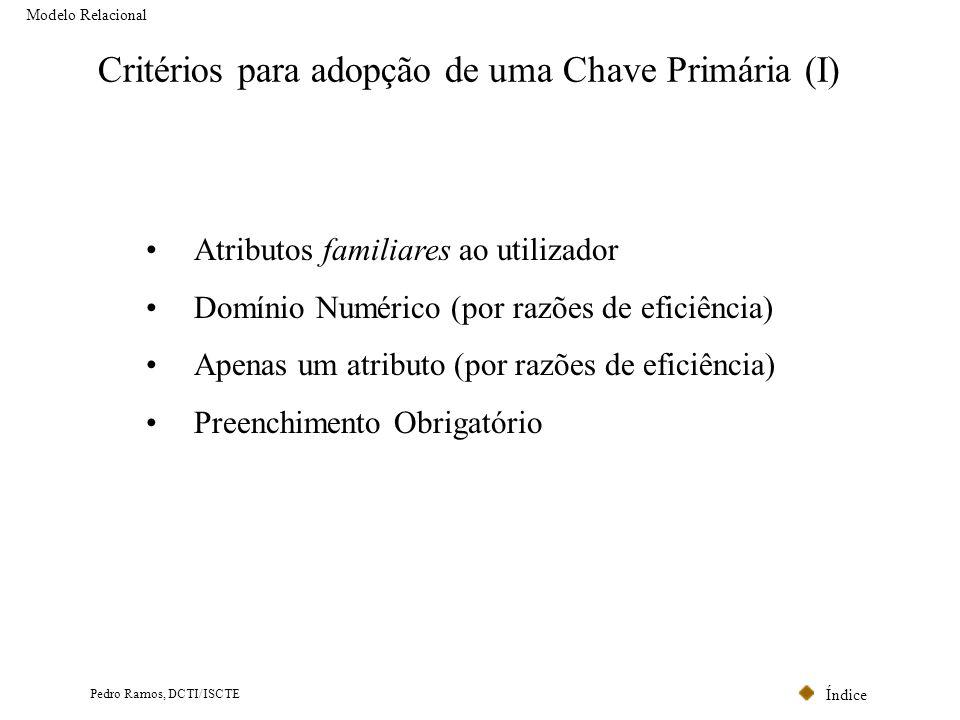 Critérios para adopção de uma Chave Primária (I)