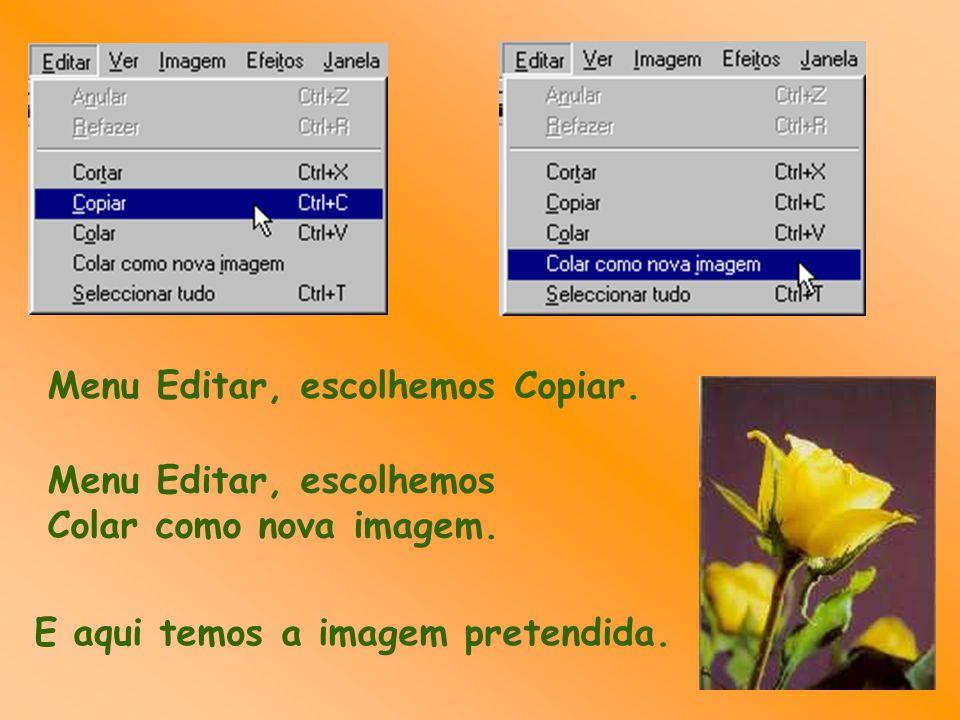 Menu Editar, escolhemos Copiar.