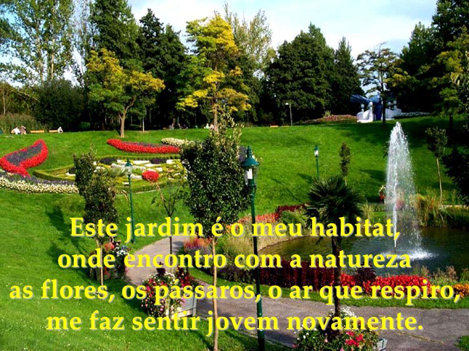 Este jardim é o meu habitat, onde encontro com a natureza
