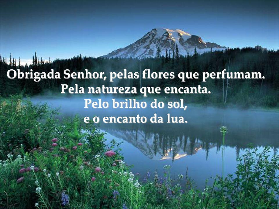 Obrigada Senhor, pelas flores que perfumam. Pela natureza que encanta.