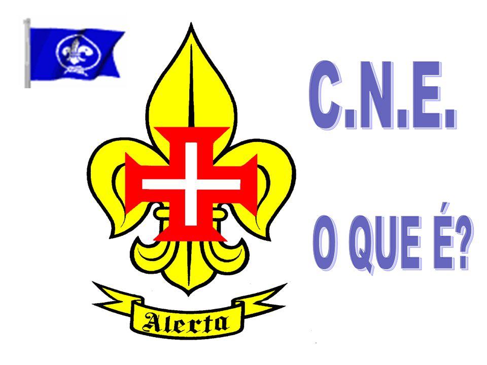 C.N.E. O QUE É