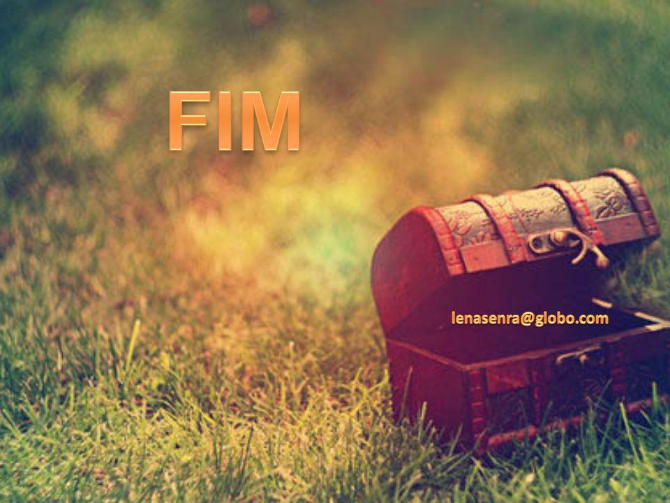 FIM lenasenra@globo.com