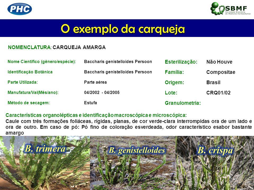 O exemplo da carqueja B. trimera B. crispa B. genistelloides