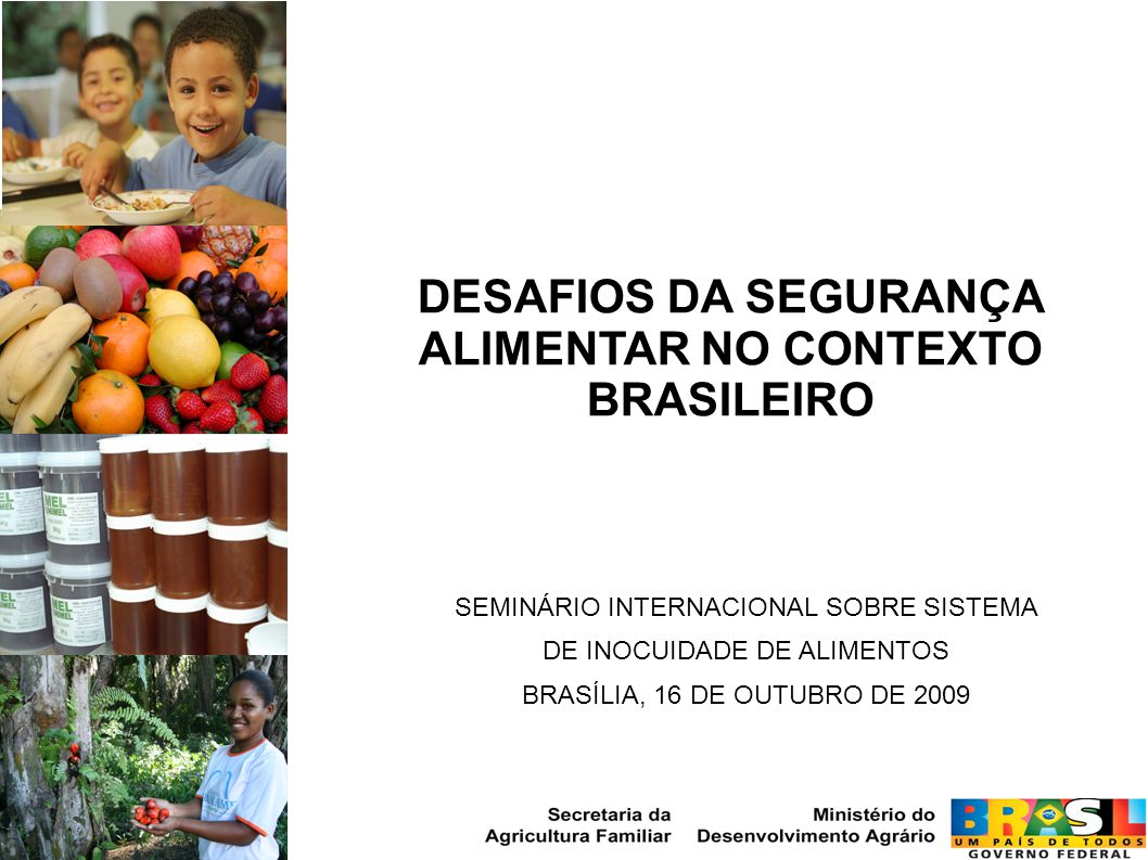 DESAFIOS DA SEGURANÇA ALIMENTAR NO CONTEXTO BRASILEIRO