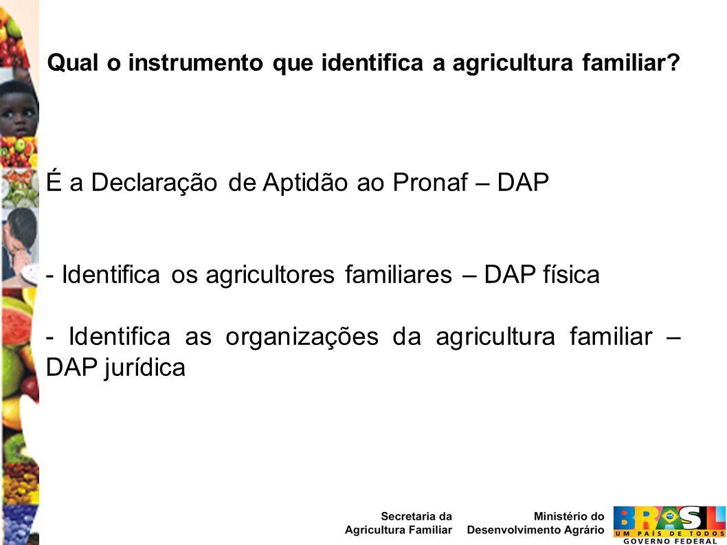 Qual o instrumento que identifica a agricultura familiar