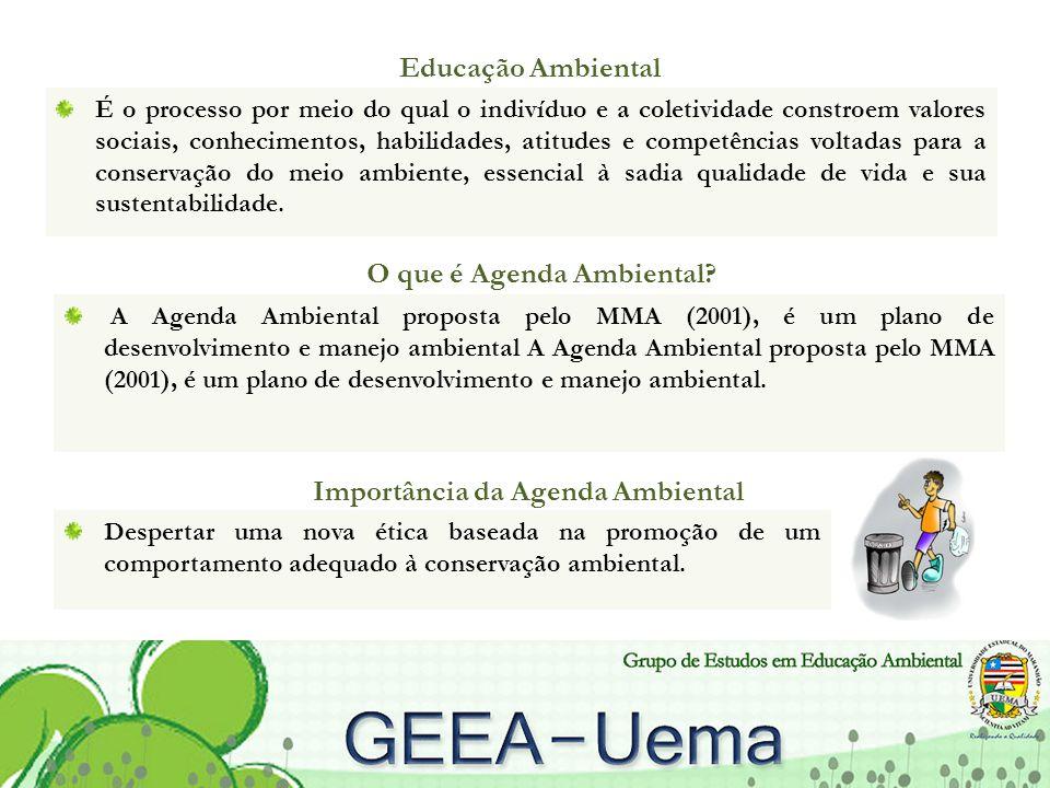 O que é Agenda Ambiental