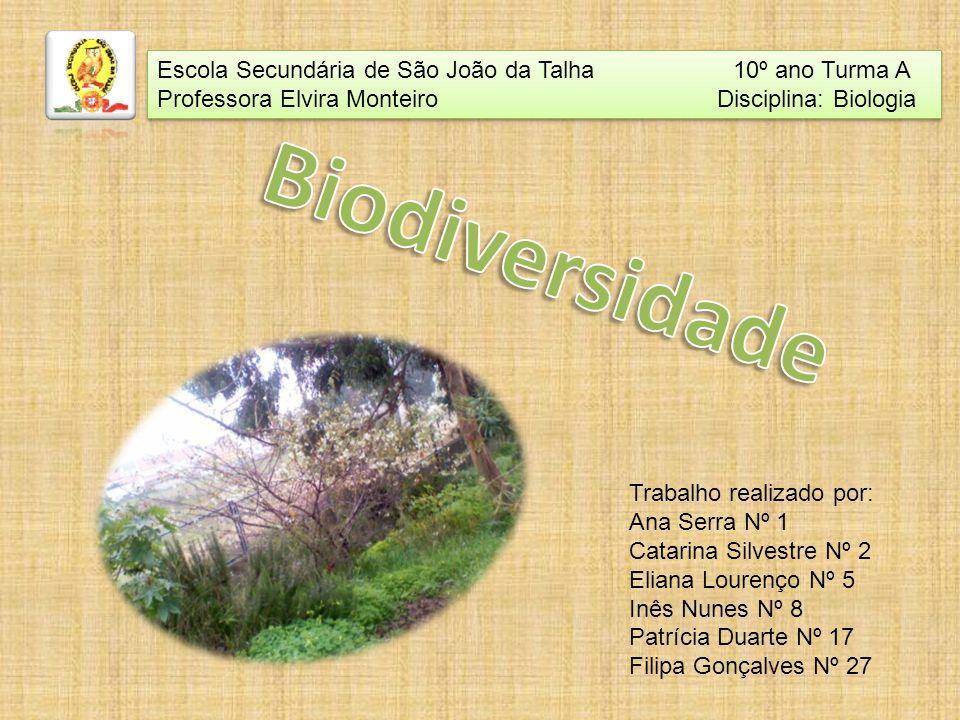 Biodiversidade Escola Secundária de São João da Talha 10º ano Turma A