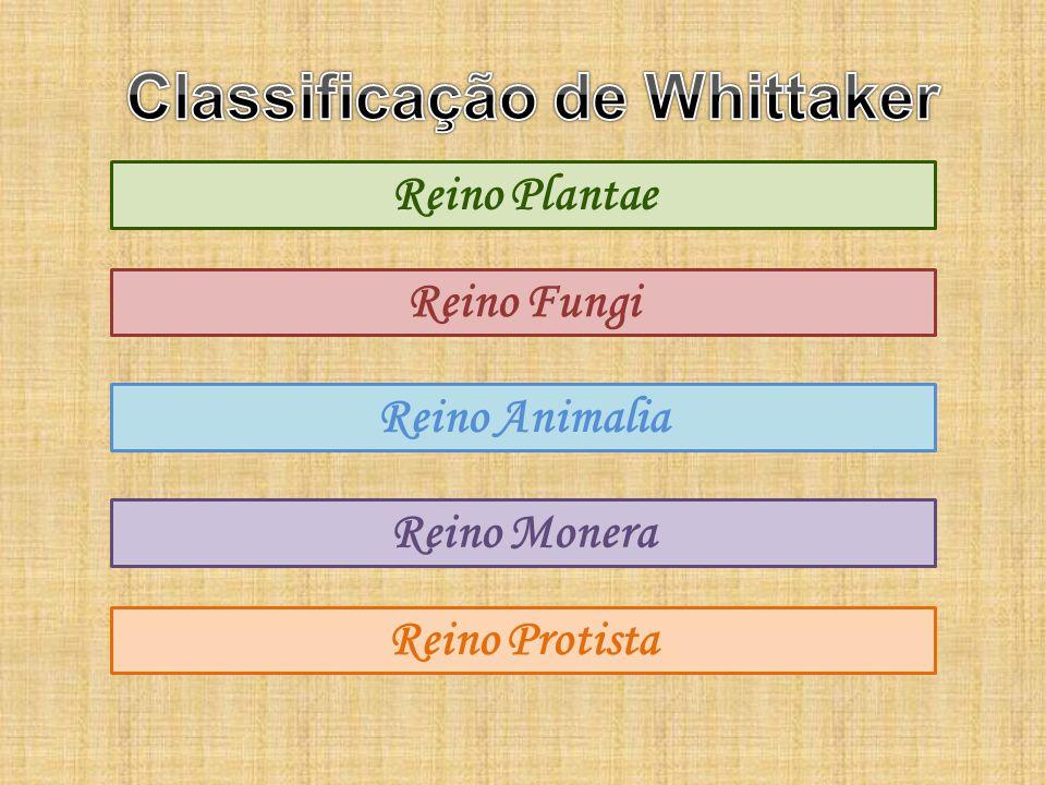 Classificação de Whittaker
