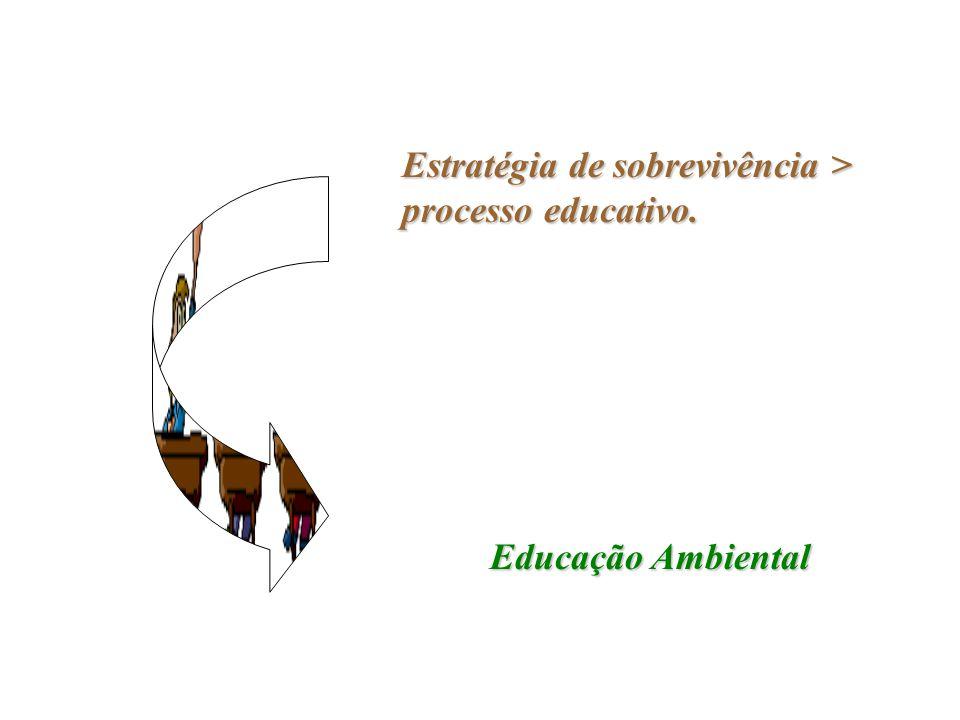Estratégia de sobrevivência > processo educativo.