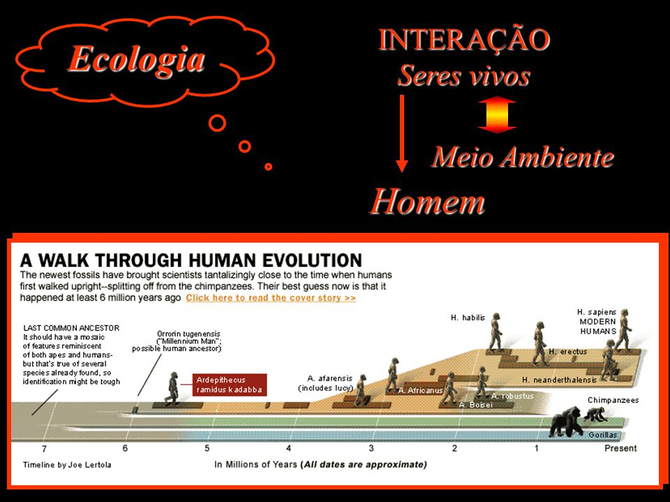 Ecologia INTERAÇÃO Seres vivos Meio Ambiente Homem