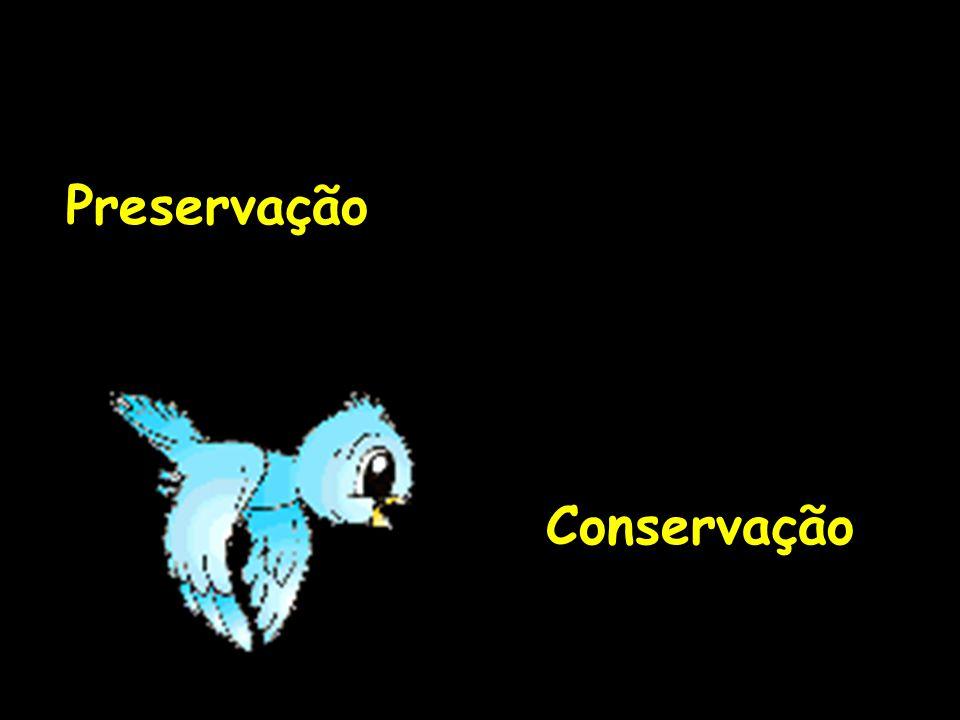 Preservação Conservação
