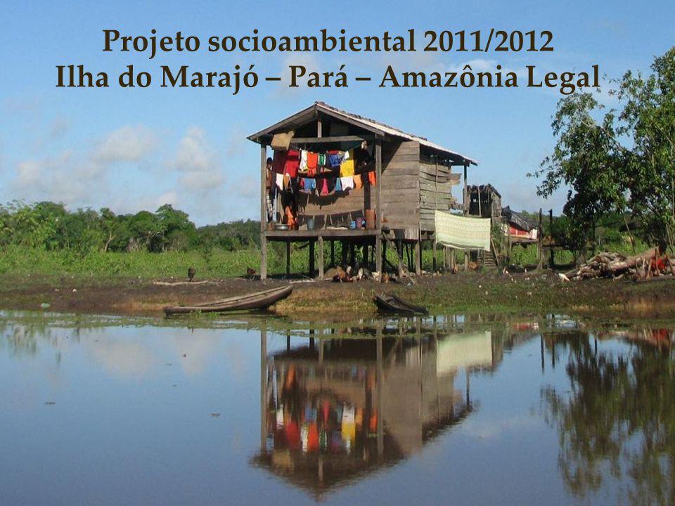 Projeto socioambiental 2011/2012
