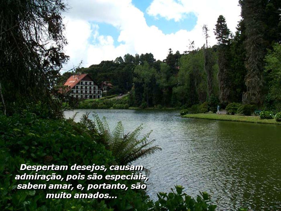 Despertam desejos, causam admiração, pois são especiais, sabem amar, e, portanto, são muito amados...