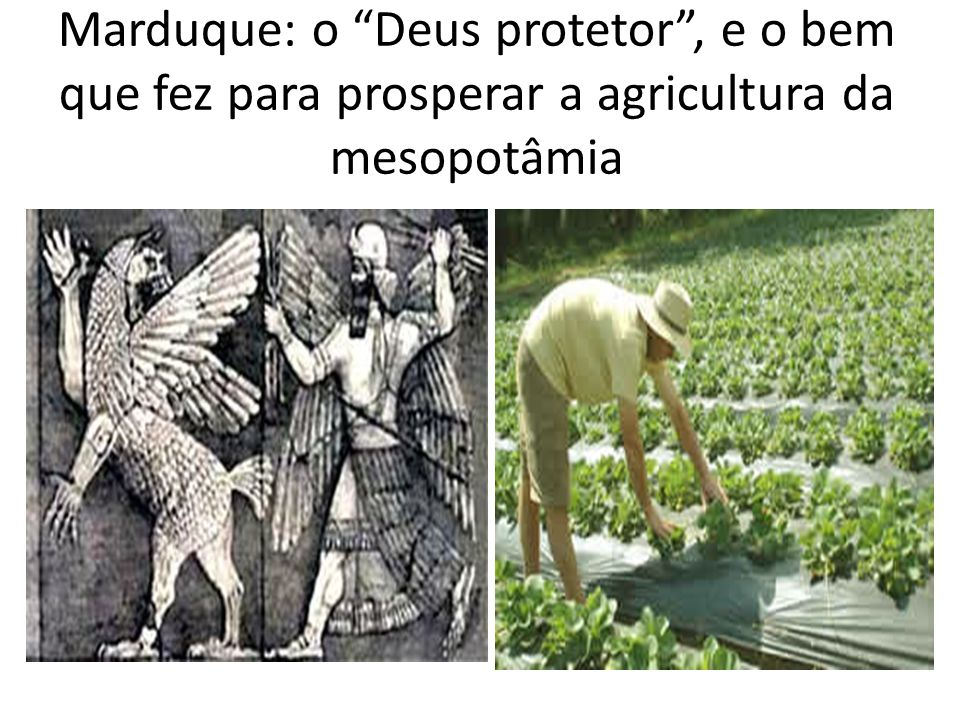 Marduque: o Deus protetor , e o bem que fez para prosperar a agricultura da mesopotâmia