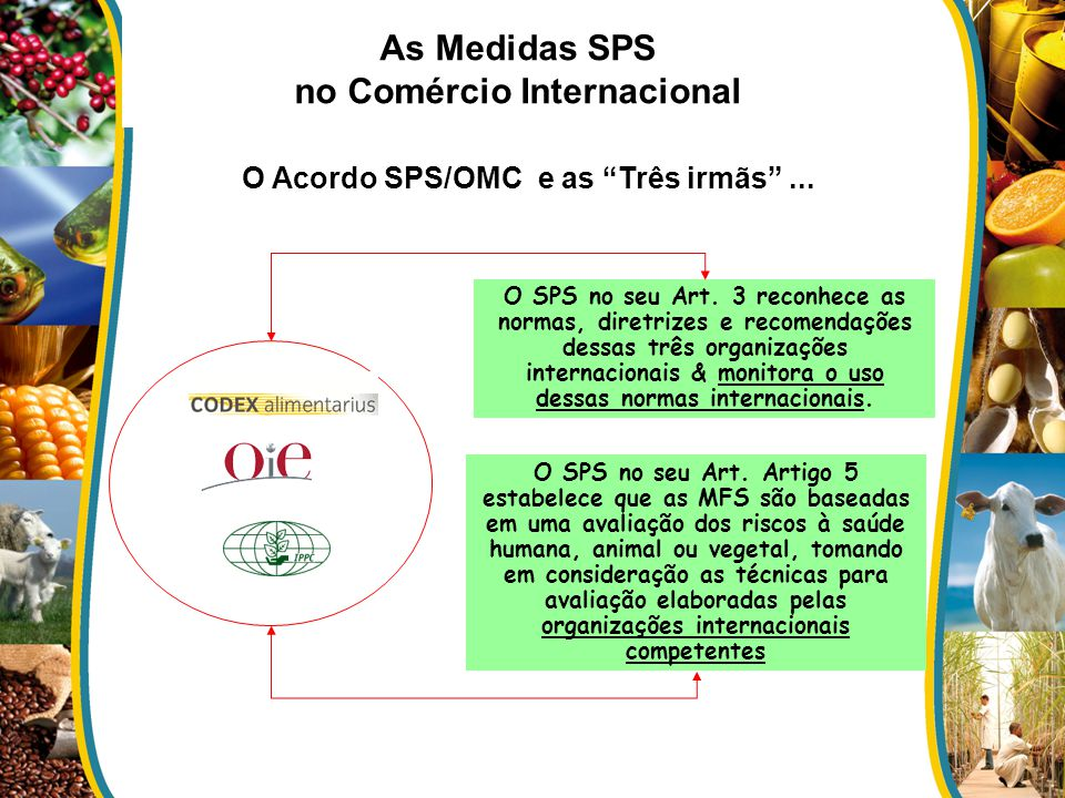 As Medidas SPS no Comércio Internacional