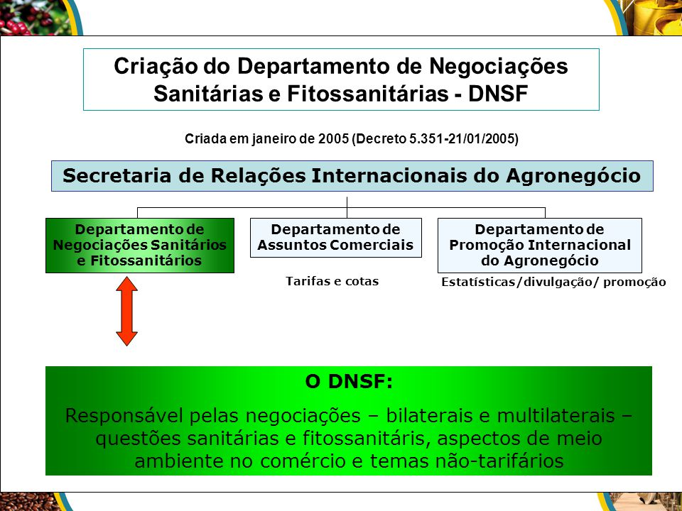 Criação do Departamento de Negociações Sanitárias e Fitossanitárias - DNSF