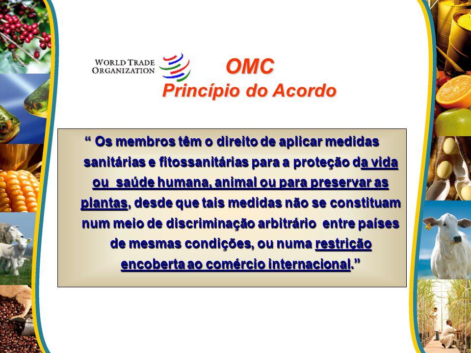 OMC Princípio do Acordo