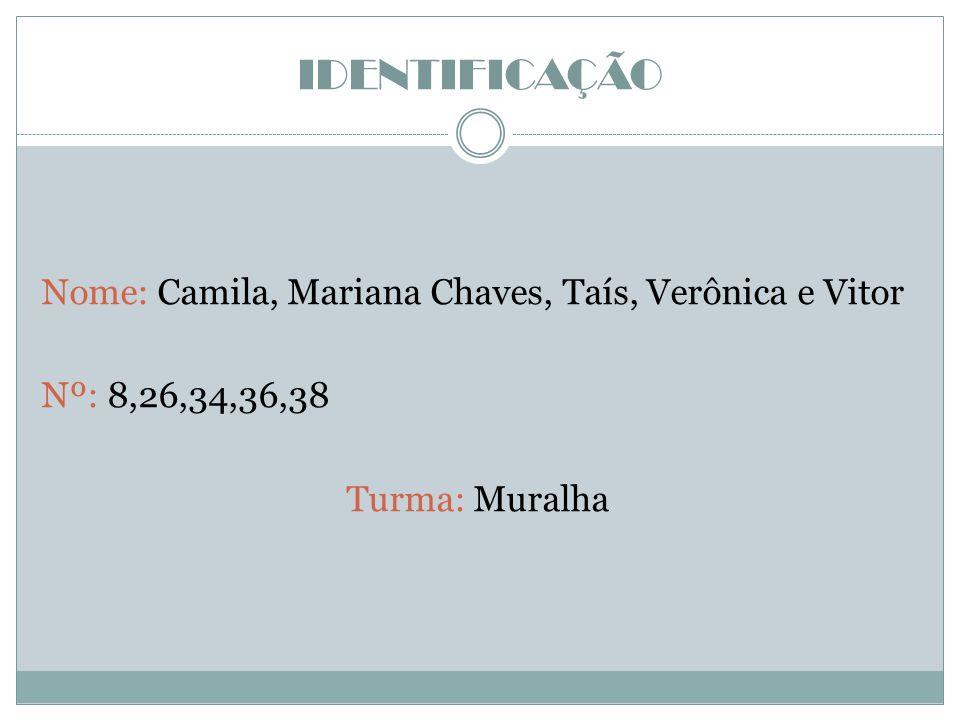 IDENTIFICAÇÃO Nome: Camila, Mariana Chaves, Taís, Verônica e Vitor