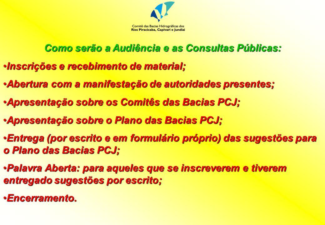Como serão a Audiência e as Consultas Públicas: