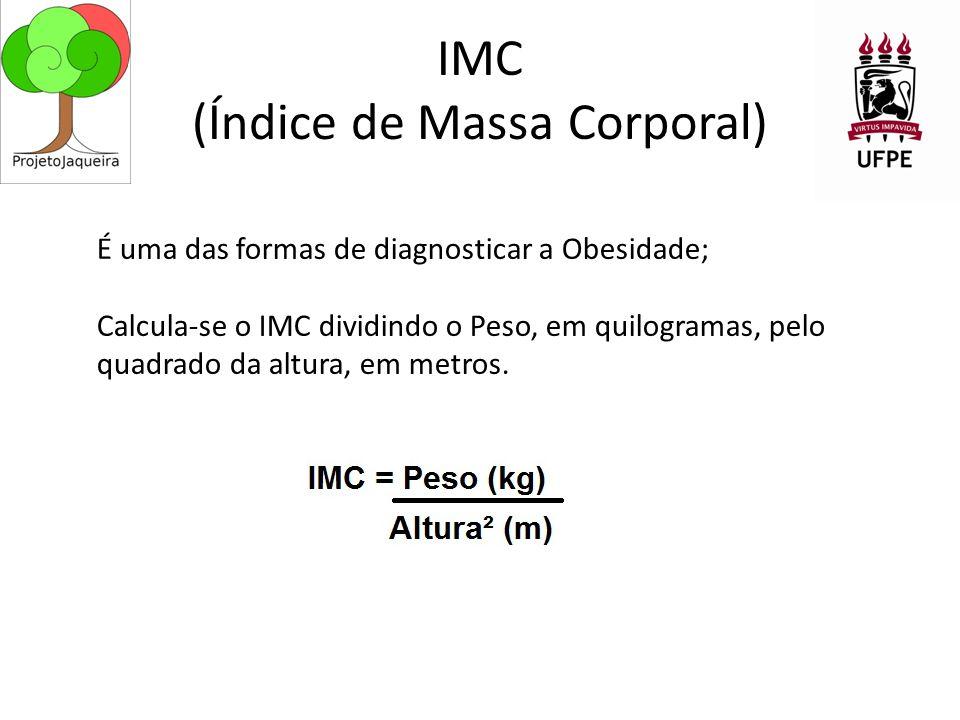 IMC (Índice de Massa Corporal)
